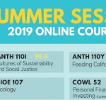 Summer Session online courses